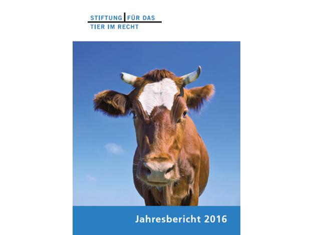 TIR Jahresbericht 2016 Cover quer