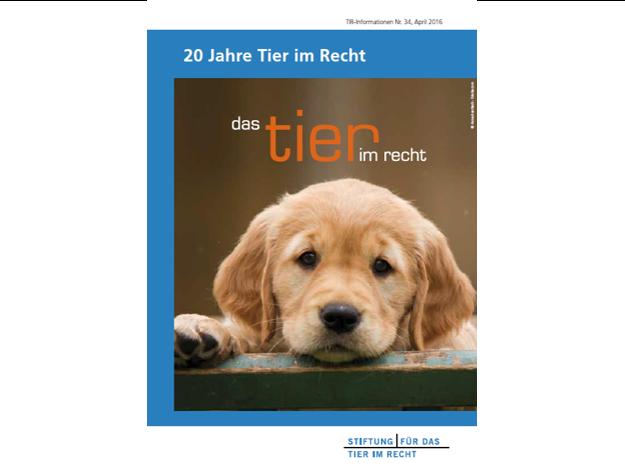 TIR Flyer Nr. 34 Front quer