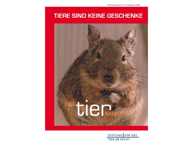 TIR Flyer Nr.8 Front quer