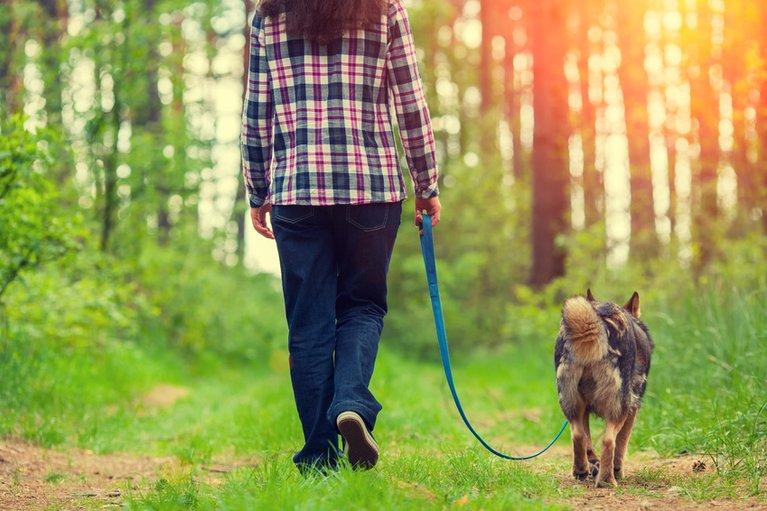 Frau mit Hund an Leine im Wald