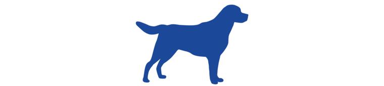Icon Hund Hunderecht grösser