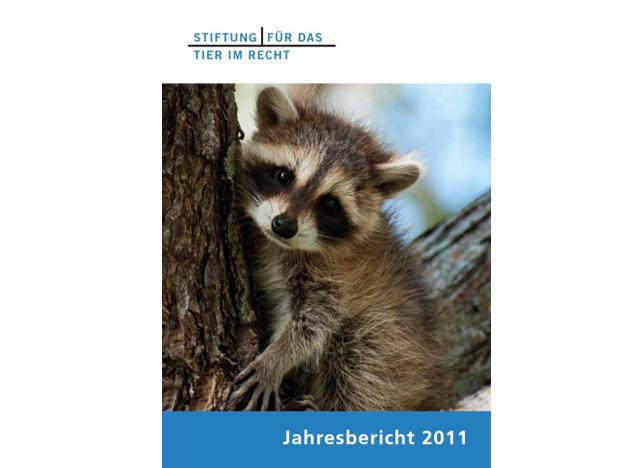 TIR Jahrebericht 2011 Cover quer