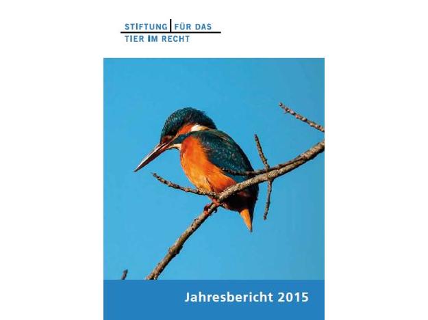 TIR Jahresbericht Cover 2015 quer