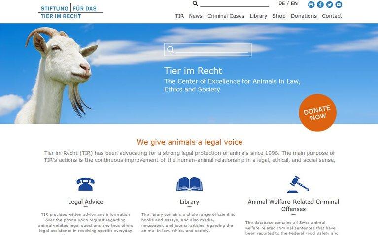 Webseite Englisch